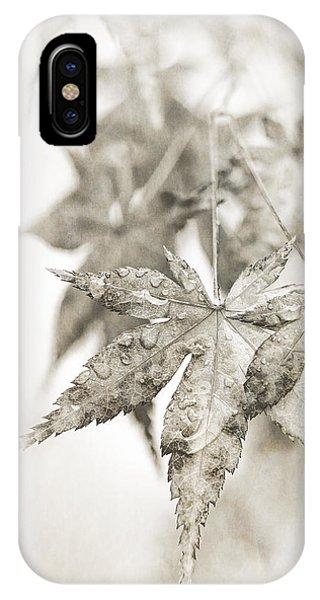 One Misty Moisty Morning IPhone Case