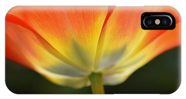 One Tulip IPhone Case