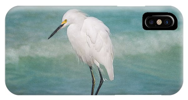 Egrets iPhone Case - One With Nature - Snowy Egret by Kim Hojnacki