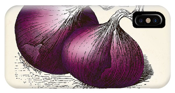 Engraving iPhone Case - Onions Vintage Illustration, Red Onions by Oliver Hoffmann