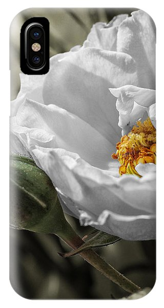Open Your Heart IPhone Case