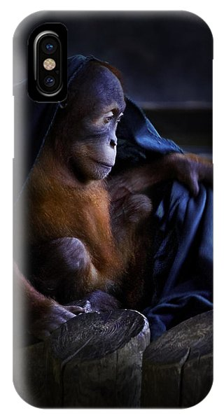 Orang Utan Youngster With Blanket IPhone Case