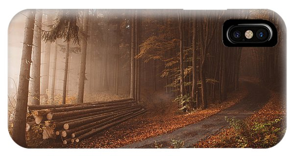 Woods iPhone Case - Orange Beauty In Common Things by Tom? Hudolin