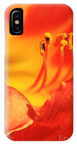 Orange Blooming IPhone Case