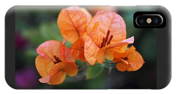 Orange Bougainvillea IPhone Case