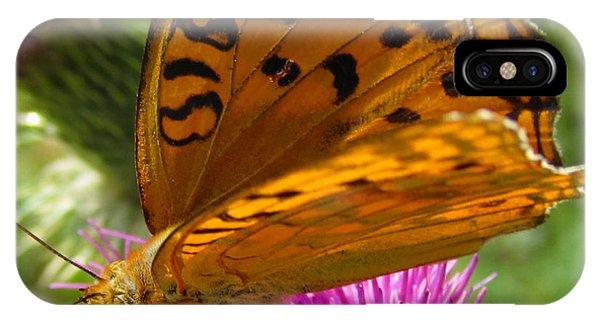 Buy Art Online iPhone Case - Orange Butterfly by Alexandros Daskalakis
