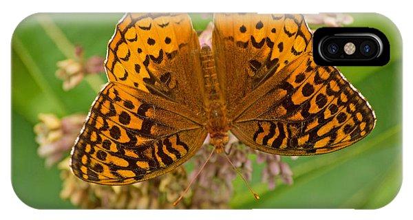 Orange Butterfly3 IPhone Case
