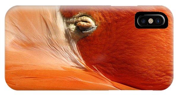 Flamingo Orange Eye IPhone Case