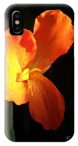 Orange Flower Canna IPhone Case