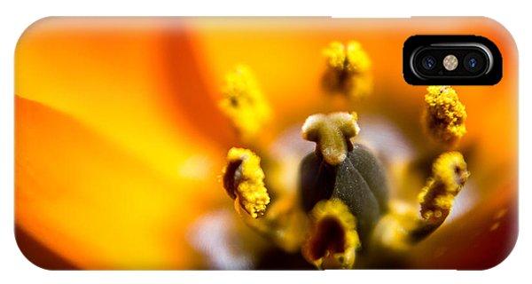 Orange Flower Phone Case by Mari Cody