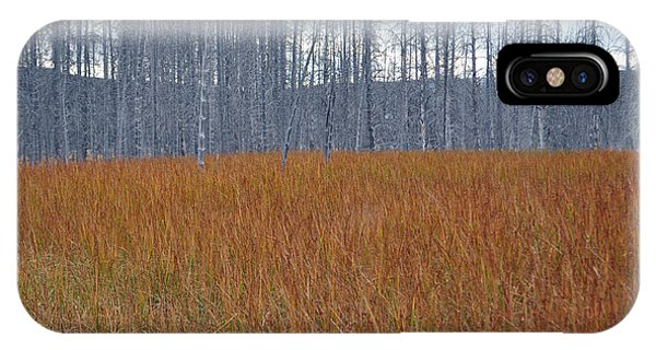 Orange Grasses And Gray Trees In Yellowstone National Park IPhone Case