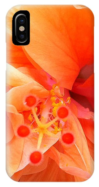 IPhone Case featuring the photograph Orange Hibiscus by Karen Zuk Rosenblatt