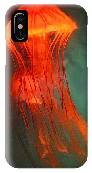 Orange Jellies IPhone Case