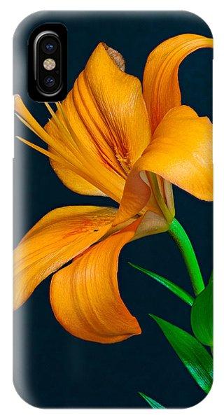 Orange Lily Profile IPhone Case