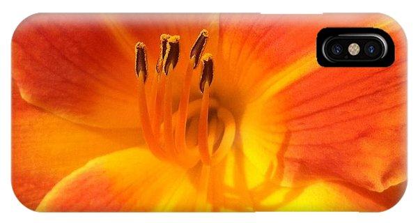 Orange Lily IPhone Case