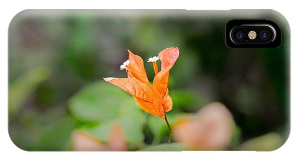 Orange Love IPhone Case