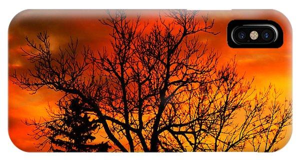Orange Morning IPhone Case