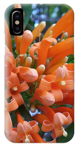 Orange Petals IPhone Case