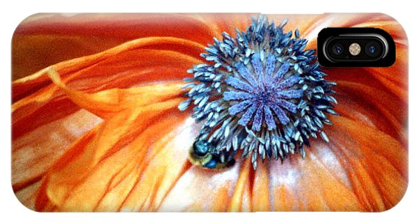 Orange Poppy Close-up IPhone Case