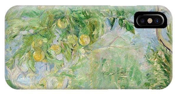 Oranger iPhone Case - Orange Tree Branches by Berthe Morisot