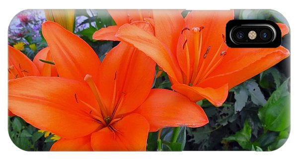 Orange You Are Pretty IPhone Case