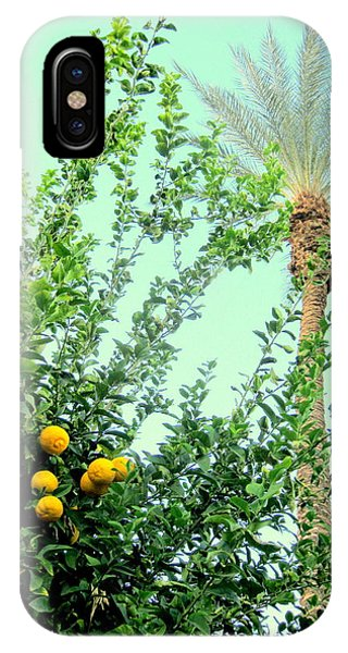 Oranges And Palm Trees IPhone Case