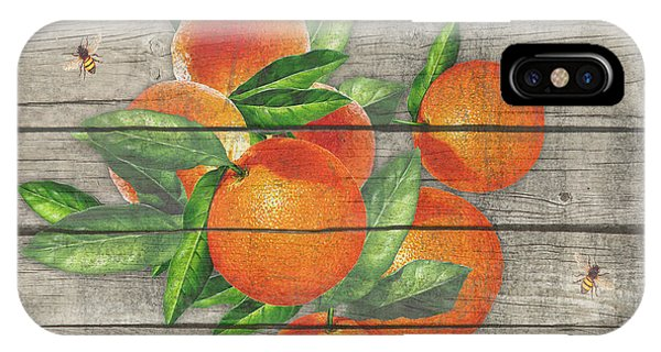 Orchard iPhone Case - Oranges-jp2677 by Jean Plout