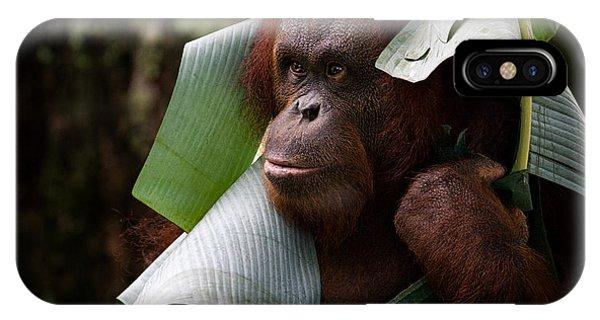 Orangutan Phone Case by Zoe Ferrie