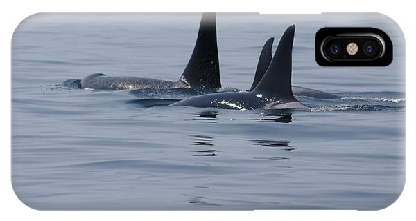 Orca Family IPhone Case