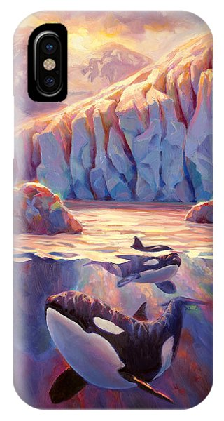 Orca Sunrise At The Glacier IPhone Case