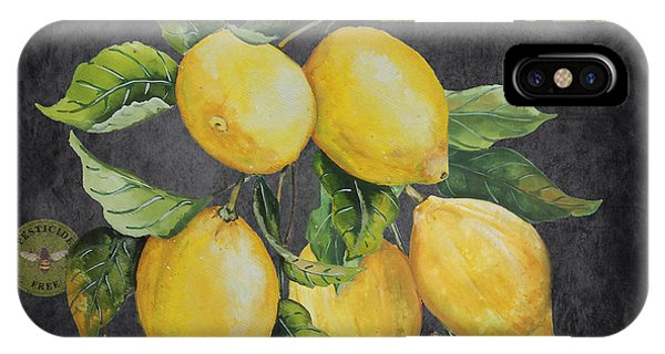 Orchard iPhone Case - Orchard Fresh Lemons-jp2679 by Jean Plout
