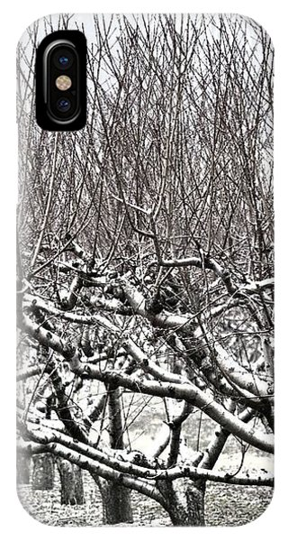 Orchard In Winter IPhone Case
