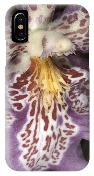 Orchid 483 IPhone Case