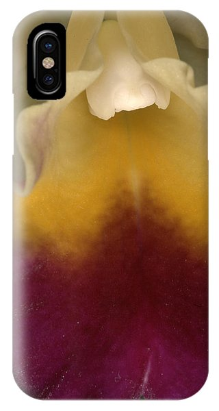 Orchid 491 IPhone Case