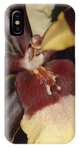Orchid 496 IPhone Case