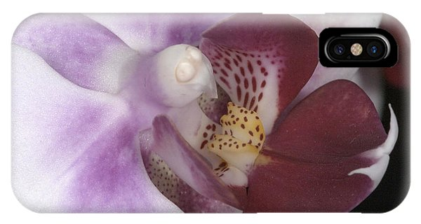 Orchid 503 IPhone Case
