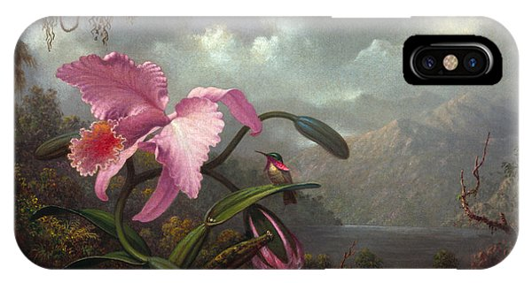 Orchid iPhone Case - Orchid And Hummingbir by Martin Johnson Heade