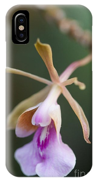 iPhone Case - Orchid Beauty by Jared Shomo
