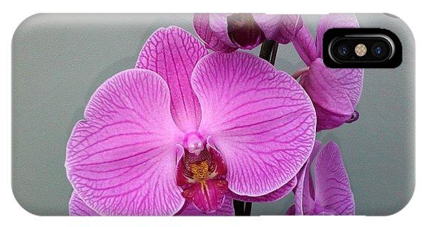 Orchid Beauty Phone Case by Jo-Ann Hayden
