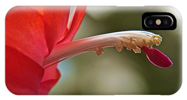 Orchid Cactus IIi IPhone Case