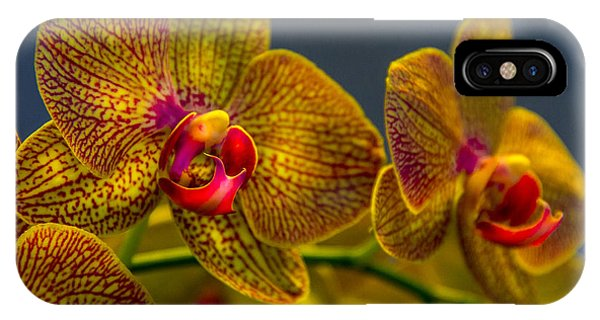 Orchid iPhone Case - Orchid Color by Marvin Spates