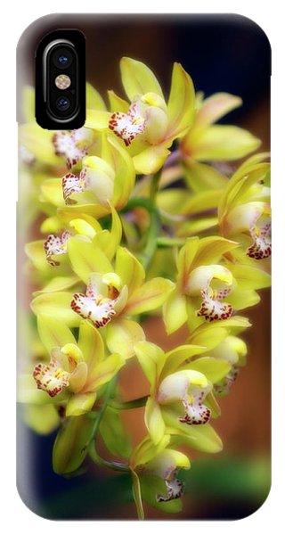 Hybrid iPhone Case - Orchid (cymbidium Hybrid) by Maria Mosolova/science Photo Library