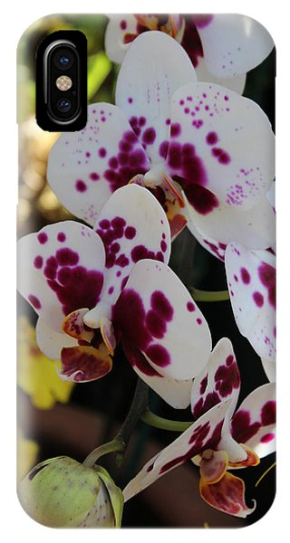 Orchid Four Phone Case by Mark Steven Burhart