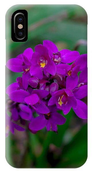 Orchid In Motion IPhone Case