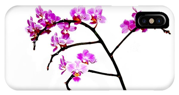 Orchid In White  IPhone Case