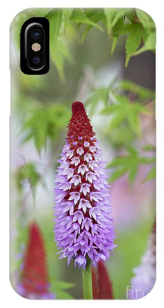 Orchid Primrose Phone Case by Tim Gainey