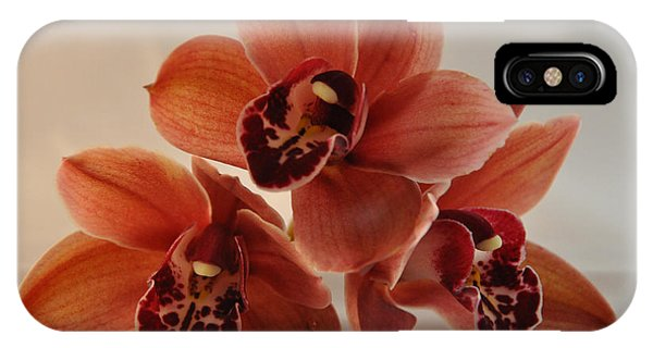Orchid Pyramid IPhone Case