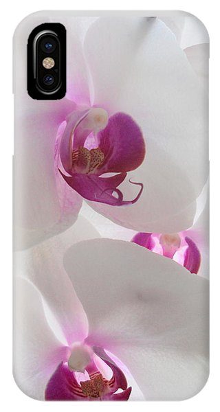iPhone Case - Orchid Trio by Kathy Spall