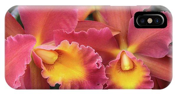 Orchids Ablaze IPhone Case