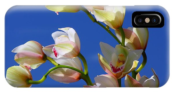 Orchids Against A Blue Sky IPhone Case